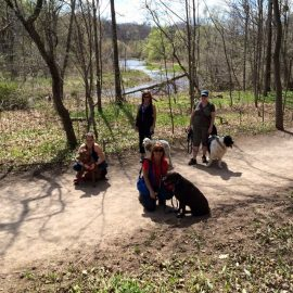 Social Obedience Dog Training:  What the heck do you do in that class?